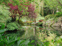 Tapeta Řeky a jezera 6