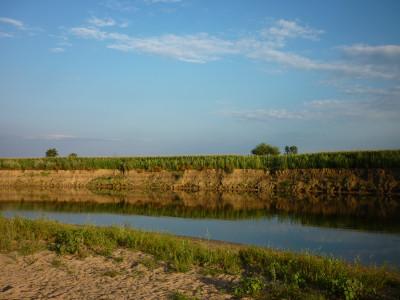 Tapeta: Říční břeh