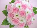Tapeta růžová svatební