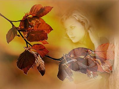 Tapeta: S podzimní větvičkou