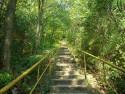 Tapeta schody do nebe