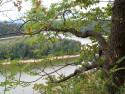 Tapeta Seč-Oheb-výhled na přehradu 02