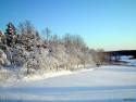 Tapeta Severské zimy 15