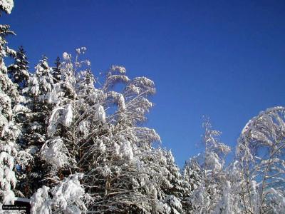 Tapeta: Severské zimy 3
