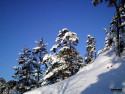 Tapeta Severské zimy 4