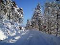 Tapeta Severské zimy 5