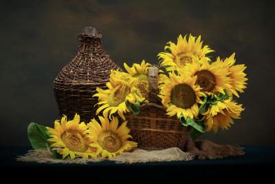 Tapeta: Slunečnice v košíku