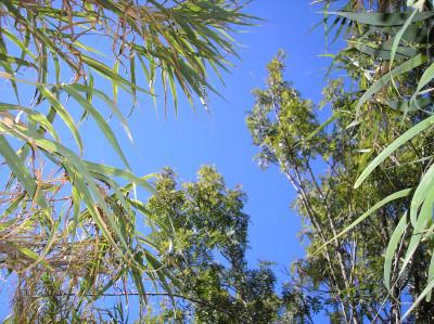Tapeta: Španělská obloha 2
