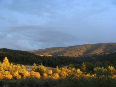 Tapeta: Španělský večer 3