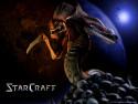 Tapeta StarCraft Zerg