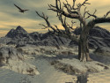 Tapeta Starý strom