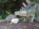 Tapeta Stegosaurus