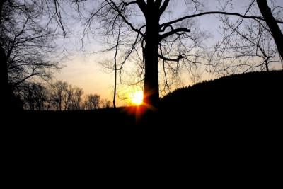 Tapeta: súmrak