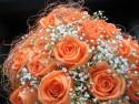 Tapeta svatební oranžová