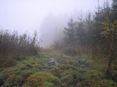 Tapeta: Svitavská podzimní mlha