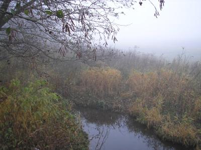 Tapeta: Svitavská podzimní mlha 11