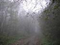 Tapeta Svitavská podzimní mlha 12
