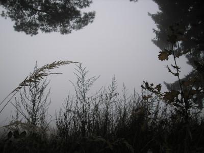 Tapeta: Svitavská podzimní mlha 69