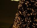 Tapeta Svítící stromek