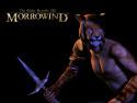 Tapeta TES III: Morrowind 2