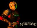 Tapeta TES III: Morrowind 4