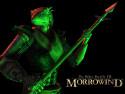 Tapeta TES III: Morrowind 7