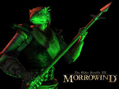 Tapeta: TES III: Morrowind 7