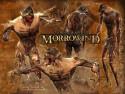 Tapeta TES III: Morrowind 8