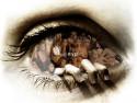 Tapeta The eye