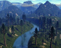 Tapeta The Land of the Giant Sequoia