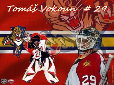 Tapeta: Tomas Vokoun