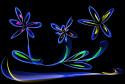 Tapeta tri kvety