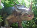 Tapeta Triceratops