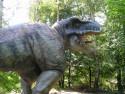 Tapeta Tyranosaurus REX