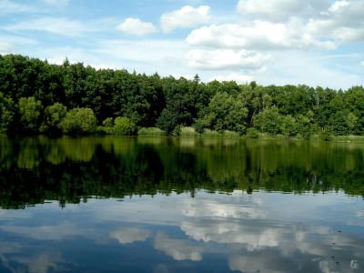 Tapeta: u rybníka