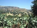 Tapeta Údolí paláců Agrigento 4