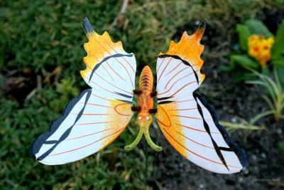 Tapeta: umělý motýl