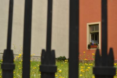 Tapeta: Útulný domov