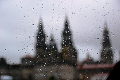 Tapeta: V dešti