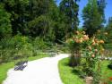 Tapeta V parku na soutoku2