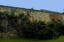 Tapeta v petřínskej záhrade2