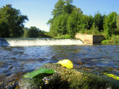 Tapeta: V Ratibořicích u splavu