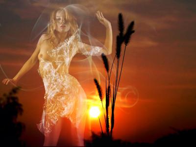 Tapeta: V západu slunce