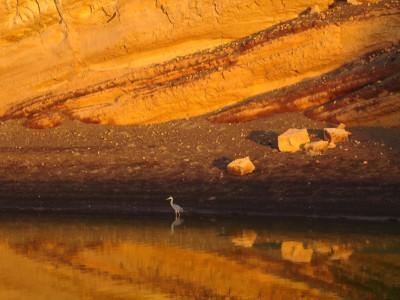 Tapeta: Večerní zrcadlení