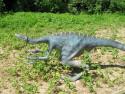 Tapeta Velociraptor