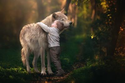 Tapeta: Vlk a chlapeček