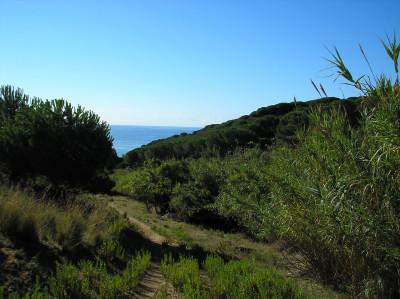 Tapeta: Výhled na moře 1