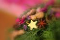 Tapeta Z floristické výstavy 11