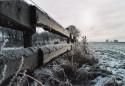 Tapeta za zimním plotem