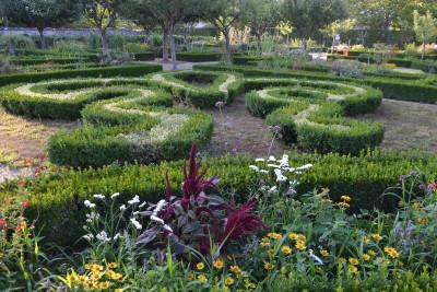 Tapeta: Zahrada převorství